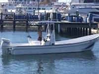 2015 Imemsa Panga W 25-BA for sale in Barnegat, New Jersey (ID-511)
