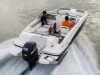 2014 Bayliner 190 for sale in Millsboro, Delaware (ID-479)
