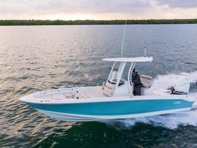 2021 Boston Whaler 250 Dauntless for sale in Ocean View, New Jersey