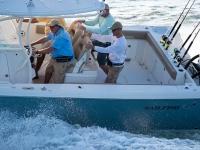 2021 Sailfish 320 CC for sale in Sarasota, Florida (ID-1644)